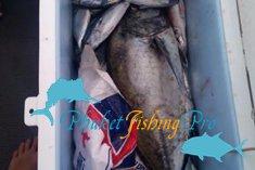Иногда приходится закончить рыбалку раньше