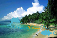 Коралловый остров (Coral)