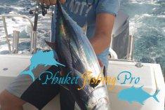 Ноябрь 2015 - морские трофеи на Пхукете с нашими клиентами